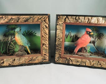 Vintage Davar Framed Bird Art, carved, shadowbox, made in Japan, 1950s, figurine, set of two