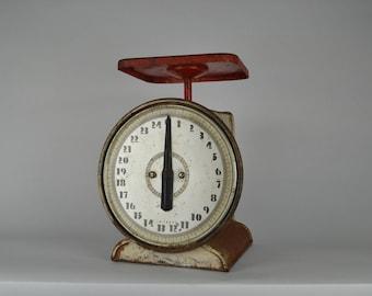Montgomery Ward Vintage Scale