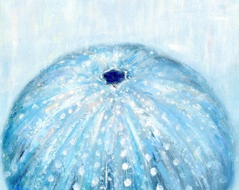 Azurechin: Fine art giclee sea urchin print from original acrylic sea urchin painting