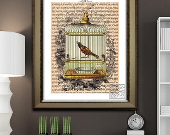 Birdcage Art Print. French Shabby Chic Wall hanging, picture,  Art Print 8 x 10 or 12 x 16""