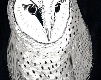 """Barn Owl - 9 x 12"""" Original Painting, Waterproof Ink on Watercolor Paper."""