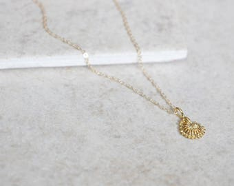 Conch Seashell Necklace - 14k Gold Filled or Sterling Silver - Everyday Jewelry