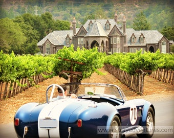 A Shelby Cobra in Napa Valley Wine Country jpg Digital Download
