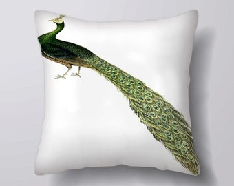 Peacock Feather Bird Vintage -Can BeCustomizeable Personlized   -Cushion Cover Case Or Stuffed With Insert
