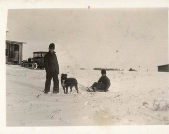 Vintage photo South Dakota Boys on Sled w Dog in Snow vintage snapshot