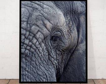 Elephant Print, Close-up Elephant, African Animal, Elephant Wall Art, Modern Photography, Minimalist Photography, Modern Art Photography