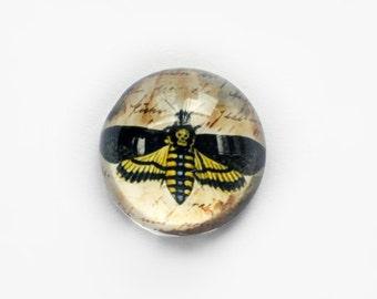 25mm handmade glass eye cabochon - Death head hawk moth - HIGH DOME / hemispherical - jewelry supplies