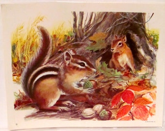 Vintage Chipmunks  Poster
