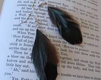 Peasant Feather Earrings