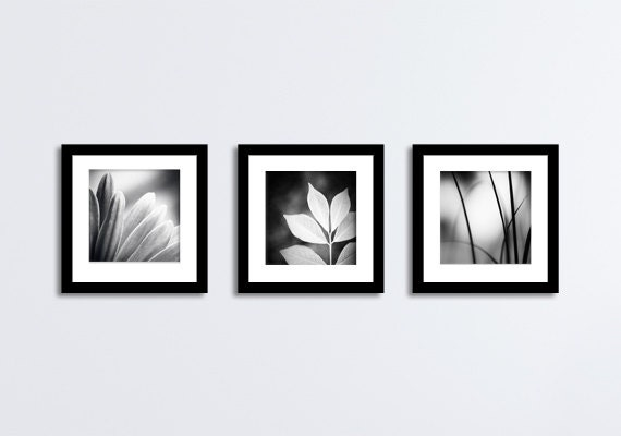 12 X 12 Black And White Photography