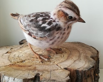 forest lark. The real size,made to order 12 days.