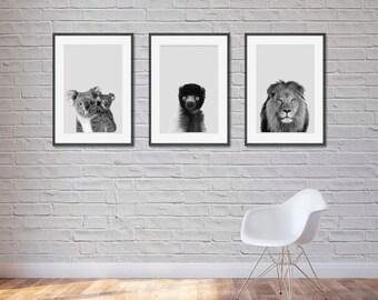 3 Animal Decor, DOWNLOAD Pictures, Animal Art, Animal Printable Art, 3 Animal Prints, Animal Art Print, 3 Animal Printable Art, DIGITAL ART