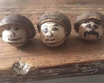 Hickory Nuts With Half Hulls, Craft Supplies