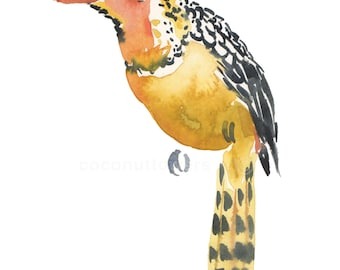 Children's Art - Watercolor Painting - Animal Painting - A4 11.7x8.3in -  Animal Art Print - Red Yellow Barbet