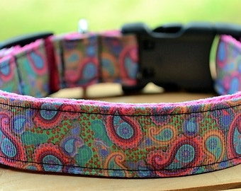 pink paisley dog collar & or leash on pink webbing