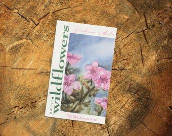 Wild Geranium Wyoming Wildflower Seeds