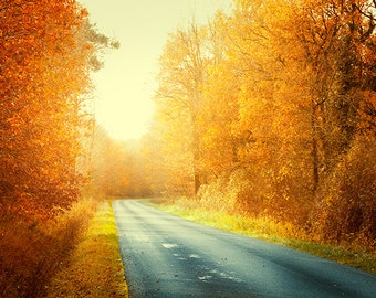 autumn landscape road photography fine art photograph yellow orange fall country decor autumn colors landscape print country road rustic