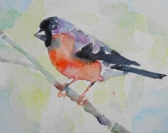 original watercolor painting ACEO bullfinch bird,2.5x3.5 inches