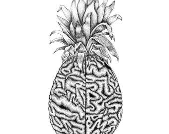 Sweet Cerebrum