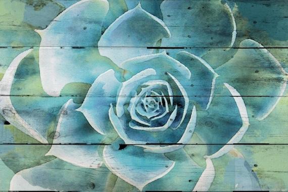 Succulent Extravaganza.  Canvas Print by Irena Orlov