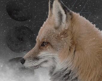 Third Eye Mystic - Fox Digital Download