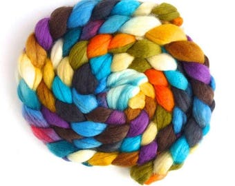 Cheerful Disposition, SW BFL Wool/ Nylon - Hand Painted Spinning Fiber