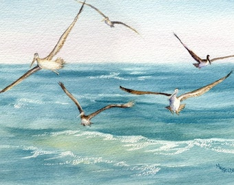 5 Pelicans Following the Ferry wake and fishing giclee