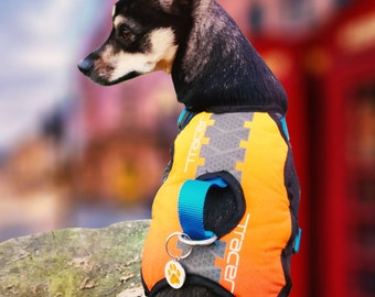 Overwatch inspired dog harness
