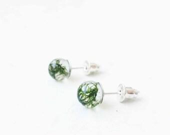 Natural jewelry - post earrings - small moss earrings - small studs - terrarium studs - botanical stud earrings - green studs