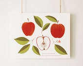 Botanical Apple Illustrat...