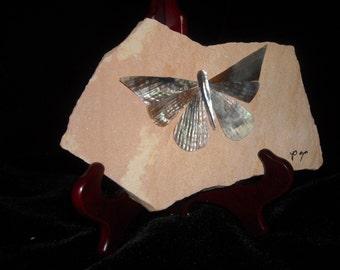 Butterfly Pen shell