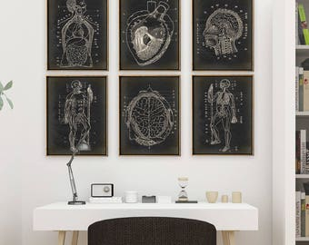 ANATOMY print SET of 6 Art Prints, Anatomy Poster in Aged Vintage Black, instant collection, Medical, Skeleton, Human Body, Heart, Brain Art