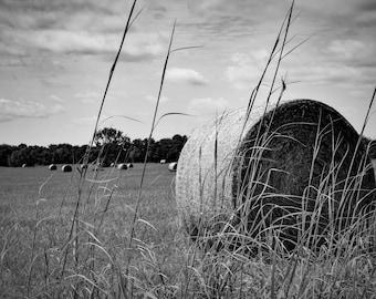 Oklahoma Hay Field