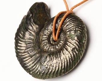 Natural Oxinatoceras Pyritized Ammonite Fossil Pendant