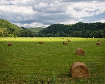 Farm Photography, Nature Print or Canvas Wrap, Country Art, Rural, Hay Bales, Hay Harvest, Mountains, Pastures, Farm House Decor - Harvest