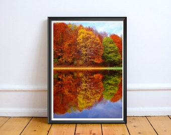 Autumn Tree Reflection,Art,Photo,Digital,Download,Decor,Home,Office,Tropical,Dusk,Ocean,Future,Coast,Coastal