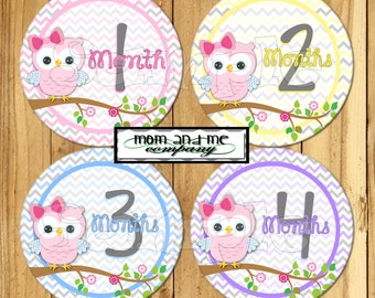 Girl Owl Baby Monthly stickers Month to Month Owl baby girl stickers Baby Shower gift owl baby stickers Infant month stickers age stickers