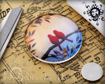 40 30mm Glass Domes Cabochon - 30GD