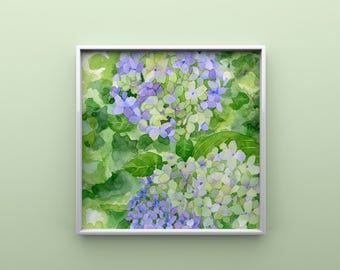 Hydrangea Print from Original Watercolor