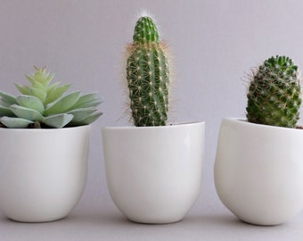 Ceramic pot etsy flower pot planter set desk plant pot indoor planter succulent favor modern planter ceramic pot small planter pottery vase coworker gift mightylinksfo