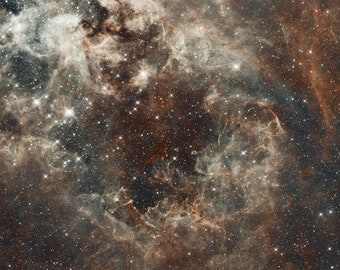 The Tarantula Nebula in the Large Magellanic Cloud NASA, ESA and the Hubble Heritage Team Gallery Wrapped Canvas Wall Art Print (D50)
