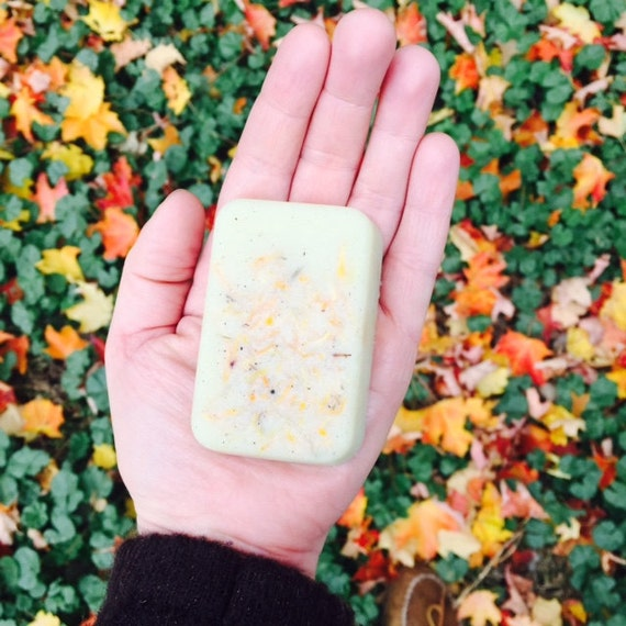 Organic shea and cocoa butter solid lotion bar, choose lemongrass or lavender