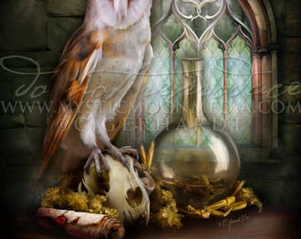 Owl of Cunning /  Potter Gift Art / Snake / Nerd Gifts / Nerdy / Wizard / Witch / Magic / Magical / Wizardry / School of