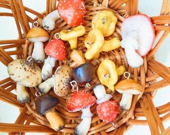 bunch of mushrooms  mushroom keyring necklace phone strap clay mushroom forrest mushroom fungus fly agaric
