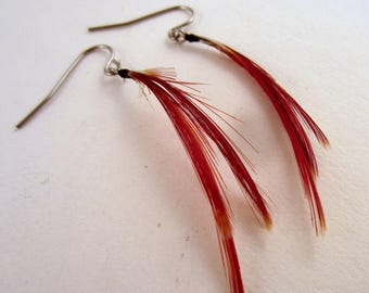 Natural Feather earrings lady amherst pheasant crest