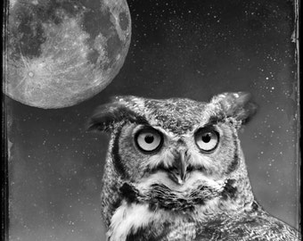 owl moon photograph, full moon, spirit animal bird, great horned owl photo, spiritual art, home decor, conceptual photography print, magical