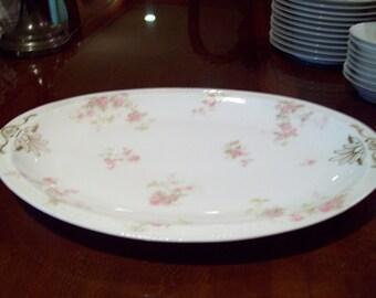 Antique Haviland France Haviland & Co. Limoges Hand Painted Porcelain Oval Platter - Made in France - Early 1900's