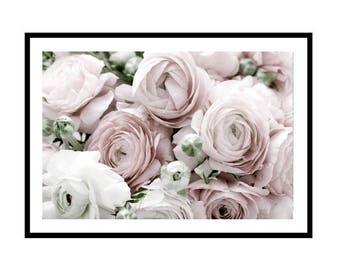 Ranunculus Print, Floral Photography Print, Pink Floral Print, Ranunculus Flower Wall Art, Botanical Print