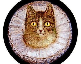 Cat stained glass, kilnfired, glass painting, cat coquette suncatcher, cat suncatcher, suncatcher, cat stained glass fragment, cat coquette