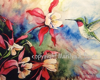 PRINT - HUMMINGBIRD - COLUMBINE; male ruby throat, bird, flowers, columbine, watercolor, nature, garden, wings, approximately 8 x 10 inches